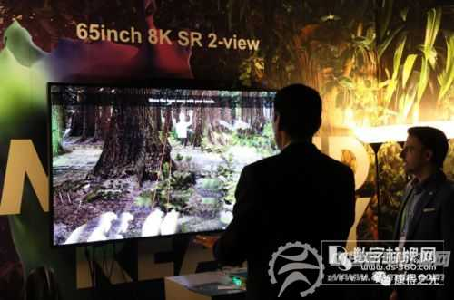 SR定义3D新未来 康得新3D+战略出击CES2018